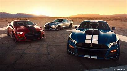 Gt500 Mustang Ford Shelby Caricos Cars