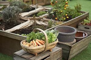 Ten, Tips, For, Successful, Raised, Bed, Gardening
