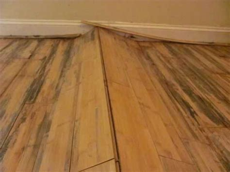 Hardwood Floors after Water Damage   Andrews Carpet Cleaning
