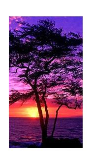 Beautiful Scenery Backgrounds ·① WallpaperTag
