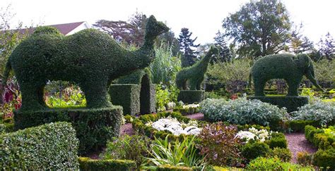 green animals topiary garden botanical gardens to visit aarp