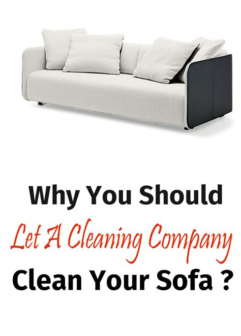 Should I Let My On The Sofa by Why You Should Let A Cleaning Company Clean Your Sofa