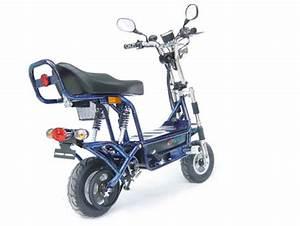 Meilleur Scooter Electrique : e dax le nouveau mini scooter lectrique de chez evol electric ~ Medecine-chirurgie-esthetiques.com Avis de Voitures