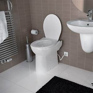 Lowe39s basement toilet http blogqualitybathcom for Bathroom pumps for basements