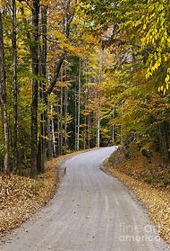 Vermont Autumn Country Road