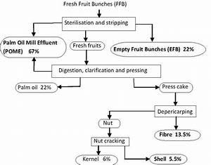 Process Flow Diagram For Palm Oil Production  24   However
