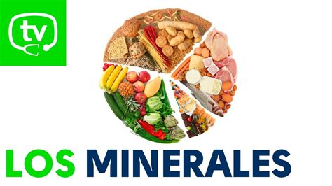 los minerales youtube