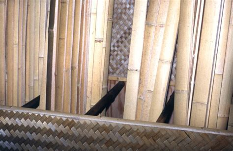 Bamboo Poles   Bamboo Fencing   Floor Mats at bamboohawaii.com