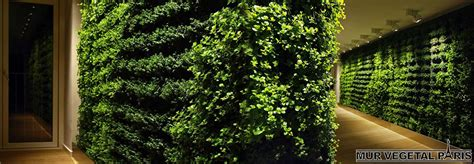 mur vegetal d interieur mur v 233 g 233 tal int 233 rieur naturel mur v 233 g 233 tal