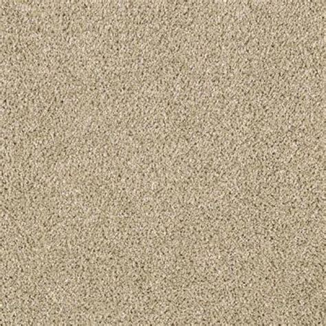 Kitchen Wall Organization Ideas - lifeproof carpet sle pagliuca ii color stepping stone texture 8 in x 8 in mo 29910835