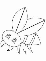 Coloring Pages Animals Fly2 Advertisement sketch template