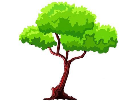 2d Cartoon Trees