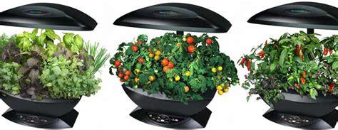 Aerogarden-automated Indoor Kitchen Garden-the Green Head