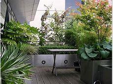 V di Vaso; come coltivare gli arbusti ornamentali