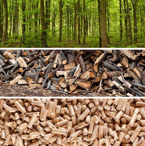 wood pellets renewable   carbon neutral