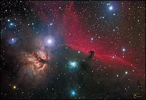 Orion Nebula and Horsehead Nebula - Pics about space