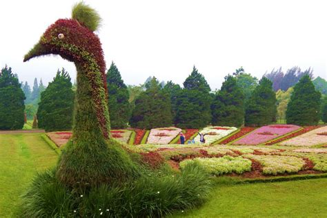 taman bunga nusantara taman indah  cianjur moneyid