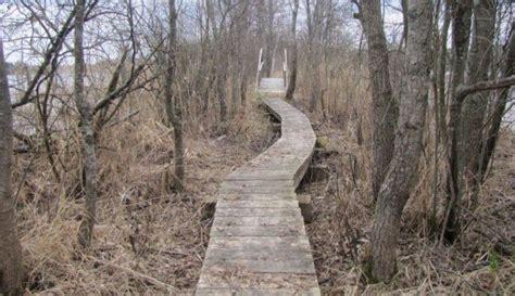 Ideja atpūtai dabā: romantiskā Dziļezera - Riebezera taka ...