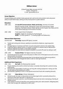 Sample Resume Format Best Resume Format Example
