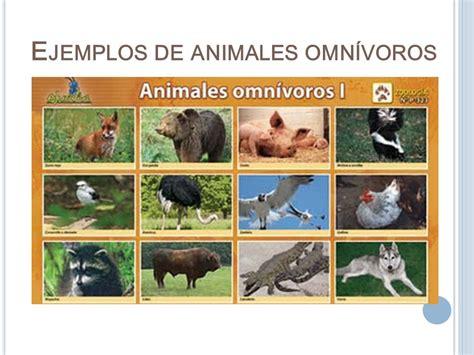 como se clasifican los animales segun su alimentacion