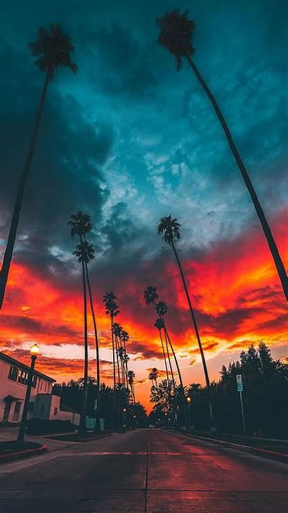 Vertical Sky Landscape Wallpapers Cloud Sunset Tree