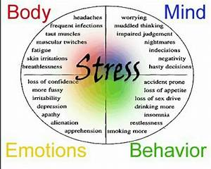 Wellness Wednesday - How Stress Effects Your Body Stress ...