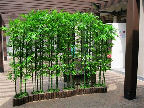 garden decoration with bamboo landscaping with bamboo garden inspiration