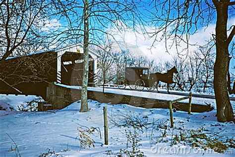 winter scene  amish buggy stock image image