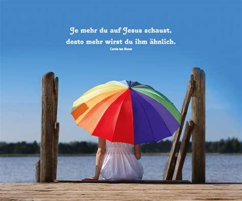 brillenputztuch regenschirm  kaufen logo