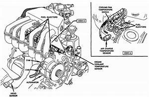 1989 F150  Crank  Spark Plugs  Moduel Fan Clutch  Flush