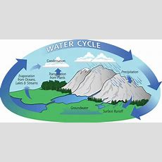 Water Cycle Webquest  Precipitation Education