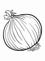 Onion Coloring Pages Colouring Fruits Broccoli Vegetables Printable Drawing Template Clipart Vegetable Templates Sketch Sheets Catfish Spinach Getdrawings Getcolorings Fruit sketch template