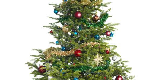 Grüne Hadern Mit Weihnachtsbaum-tradition Vor Düsseldorfer