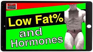 Low Body Fat And Testosterone Levels - Ft  Dr  Mike Israetel