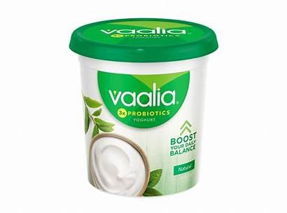 Vaalia Natural Yoghurt 900g Yogurt Fat Low