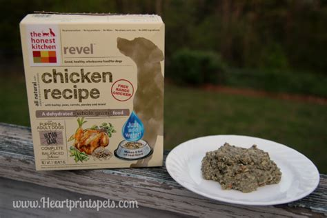 honest kitchen reviews the honest kitchen s newest recipe revel review and