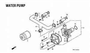 1994 honda goldwing wiring schematic engine diagram and With goldwing engine diagram related keywords suggestions goldwing