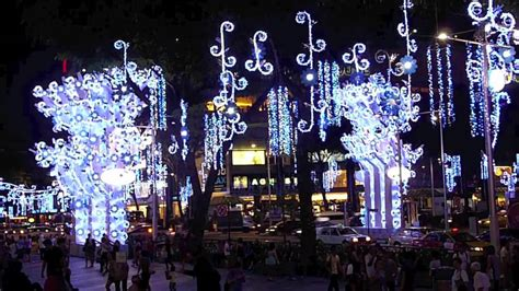 orchard road christmas light   christmas blooms