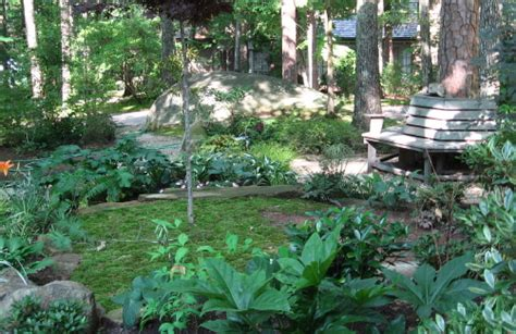 wooded garden ideas raleigh history raleigh nature page 2