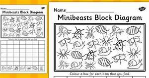Minibeasts Block Diagram Activity Sheet