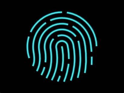 Touch Animated Fingerprint Animation Gifs Neon San