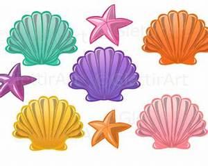 Seashell clipart | Etsy