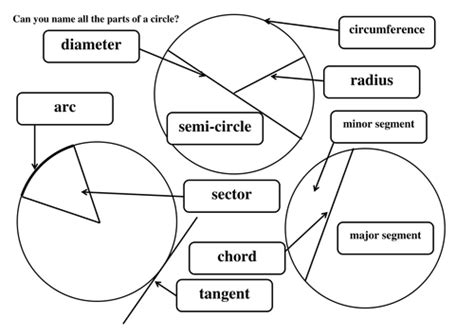 label parts of a circle by maths tiger teaching resources tes