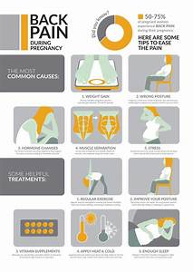 Back Pain During Pregnancy  Infographic