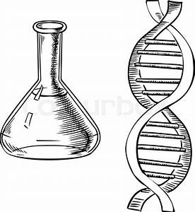 Laboratory Flask And Model Of Dna Helix Isolated On White