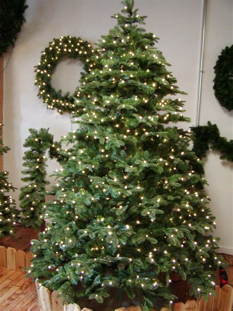noble pine christmas tree christmas lighting wholesaler suppliers omaha nebraska us 1514
