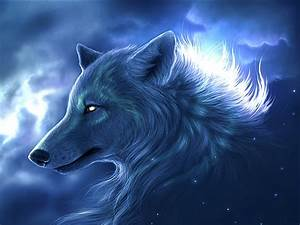 Cool Animal Wallpapers Desktop Wolf Wallpaper Desktop ...