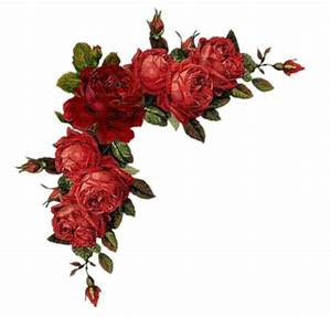 Roses Corner Border Clip Art | 2017 - 2018 Best Cars Reviews