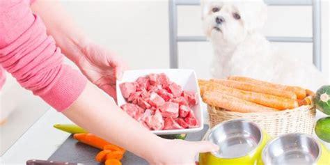 Selbst Kochen Für Hunde