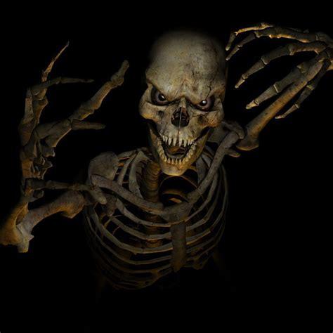 Skeleton Animated Wallpaper - scary skeleton forum avatar profile photo id 123405